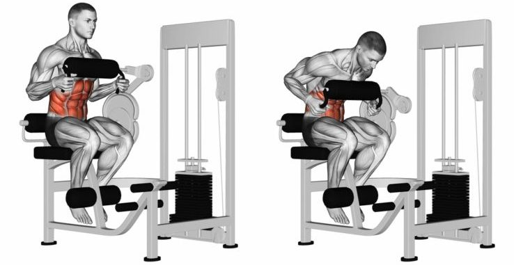 Two diagrams showing how ab crunch machines exercise your abs